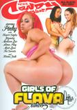 girls_of_flava_3_front_cover.jpg